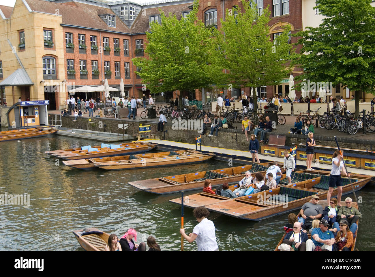 England, Cambridge, punts - Stock Image