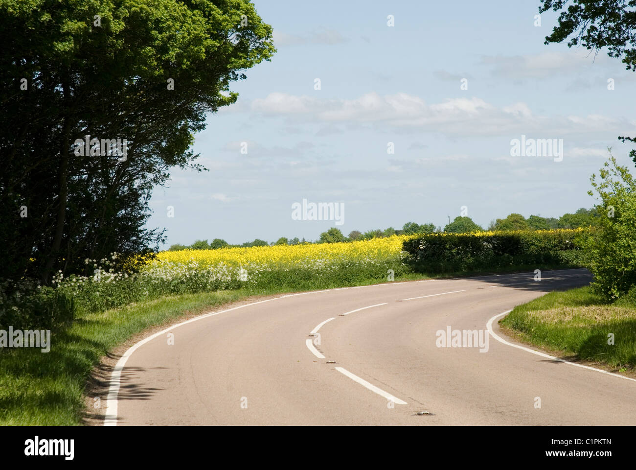 England, Suffolk, Lavenham, curving country road - Stock Image