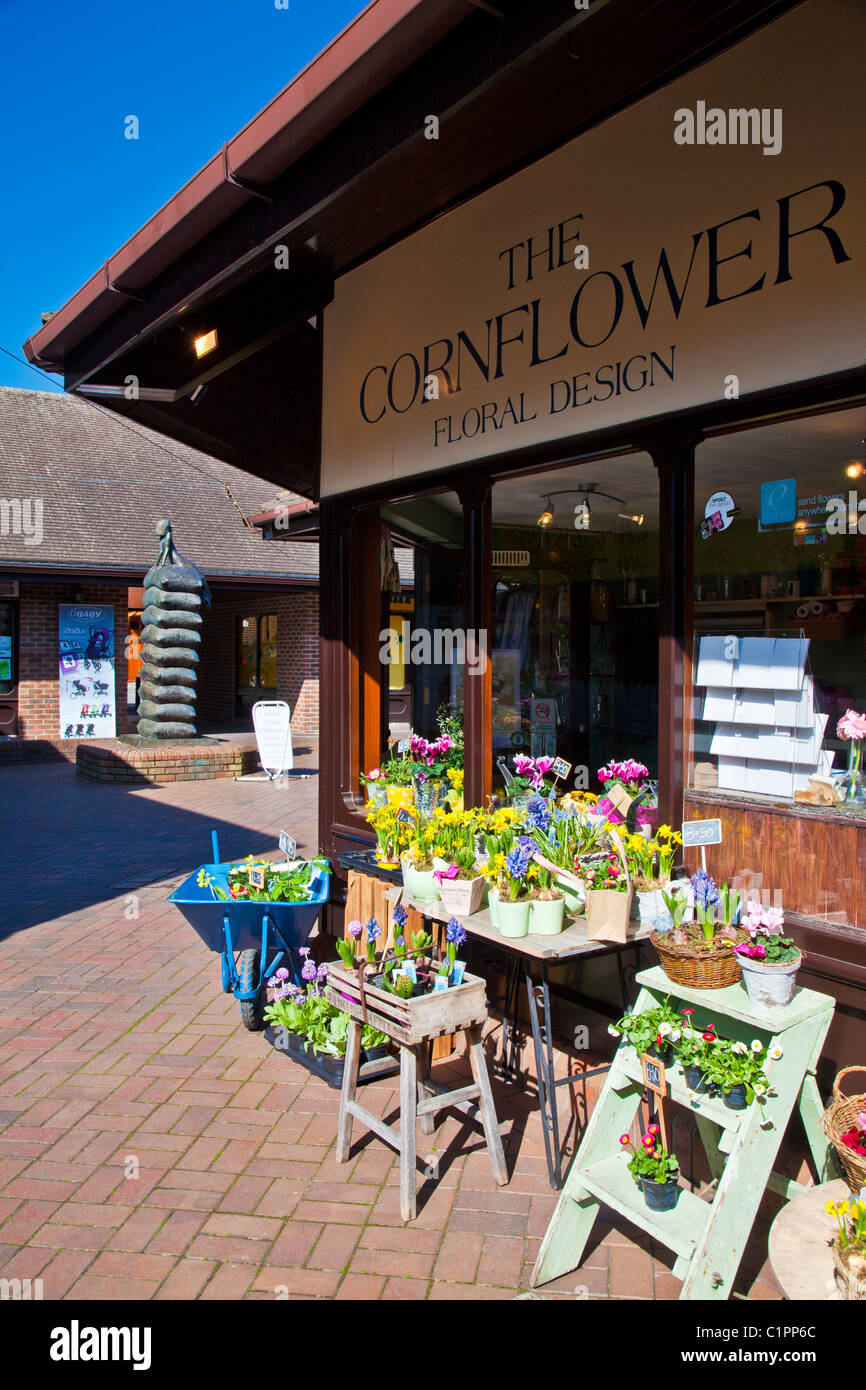 Florist shop in Cornmarket, a pedestrian shopping precint in provincial English town of Warminster in Wiltshire, - Stock Image