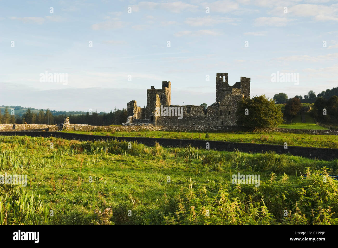 Republic of Ireland, Boyne Valley, West Meath, Fore Abbey - Stock Image