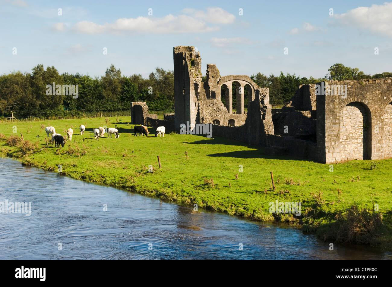 Republic of Ireland, Boyne Valley, Priory of St. John the Baptist - Stock Image