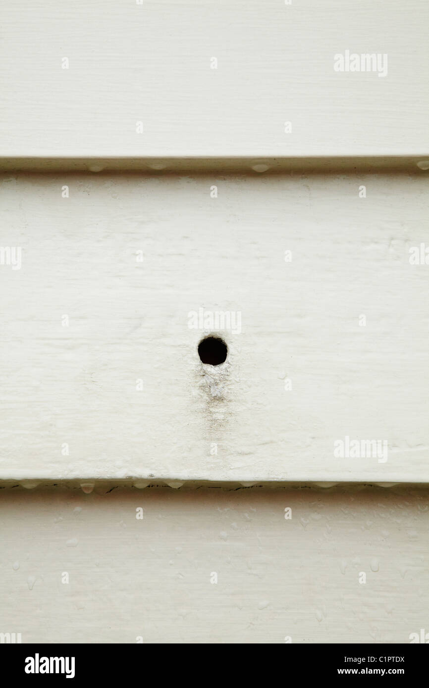Historic bullet holes in Christ Church Russell (1836), Bay of Islands, Northland, North Island, New Zealand - Stock Image