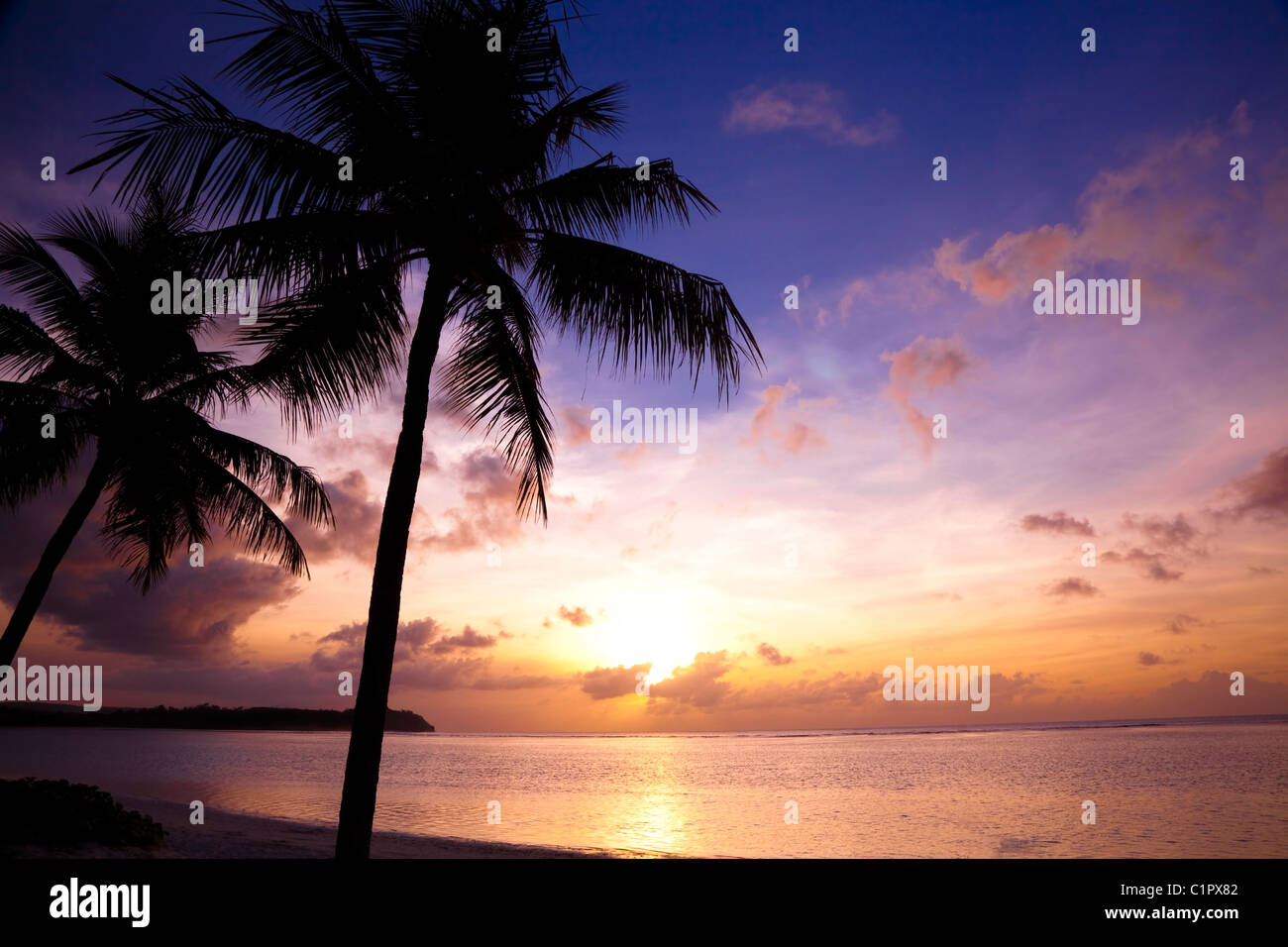 Beautiful sunset on the tropic beach and coconut palms - Stock Image