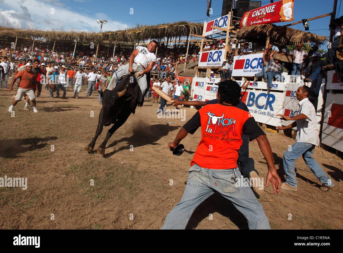 Bull riding during a civic festival, Liberia, Costa Rica - Stock Image