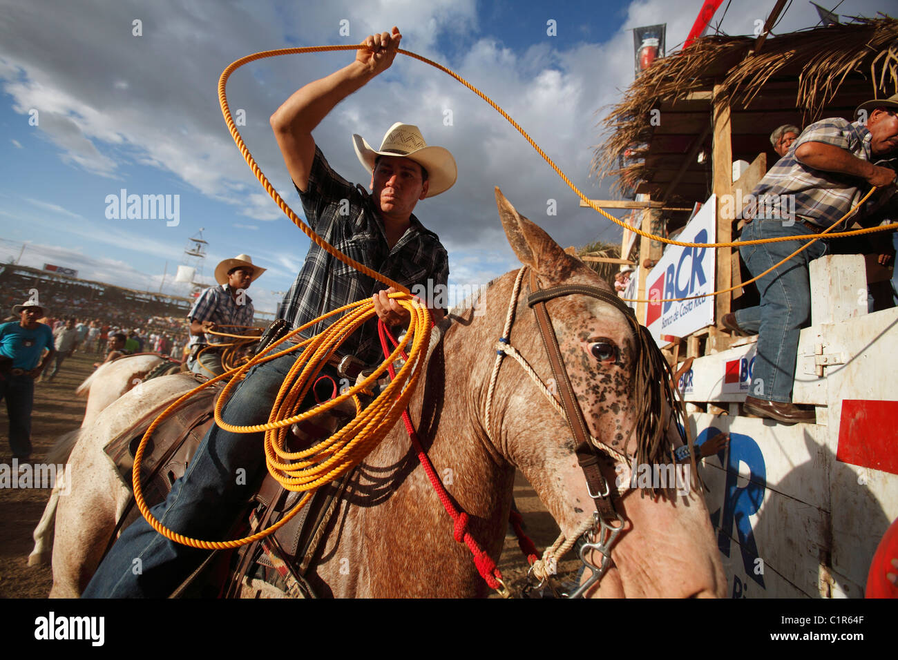 Cowboy at a bull riding event as part of a civic festival in Liberia, Costa Rica - Stock Image