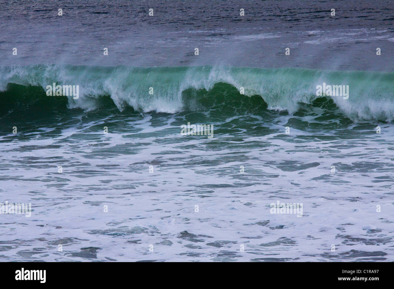 Breaking wave with the crest blown back by wind, Monterey Bay, Central California, USA - Stock Image