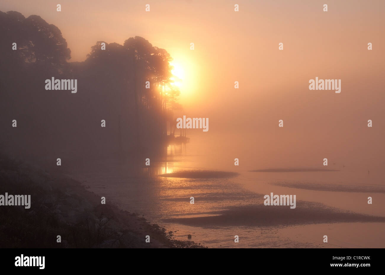 Early morning sun breaks through fog along the 'forgotten coast' west of Apalachicola, Florida, USA - Stock Image