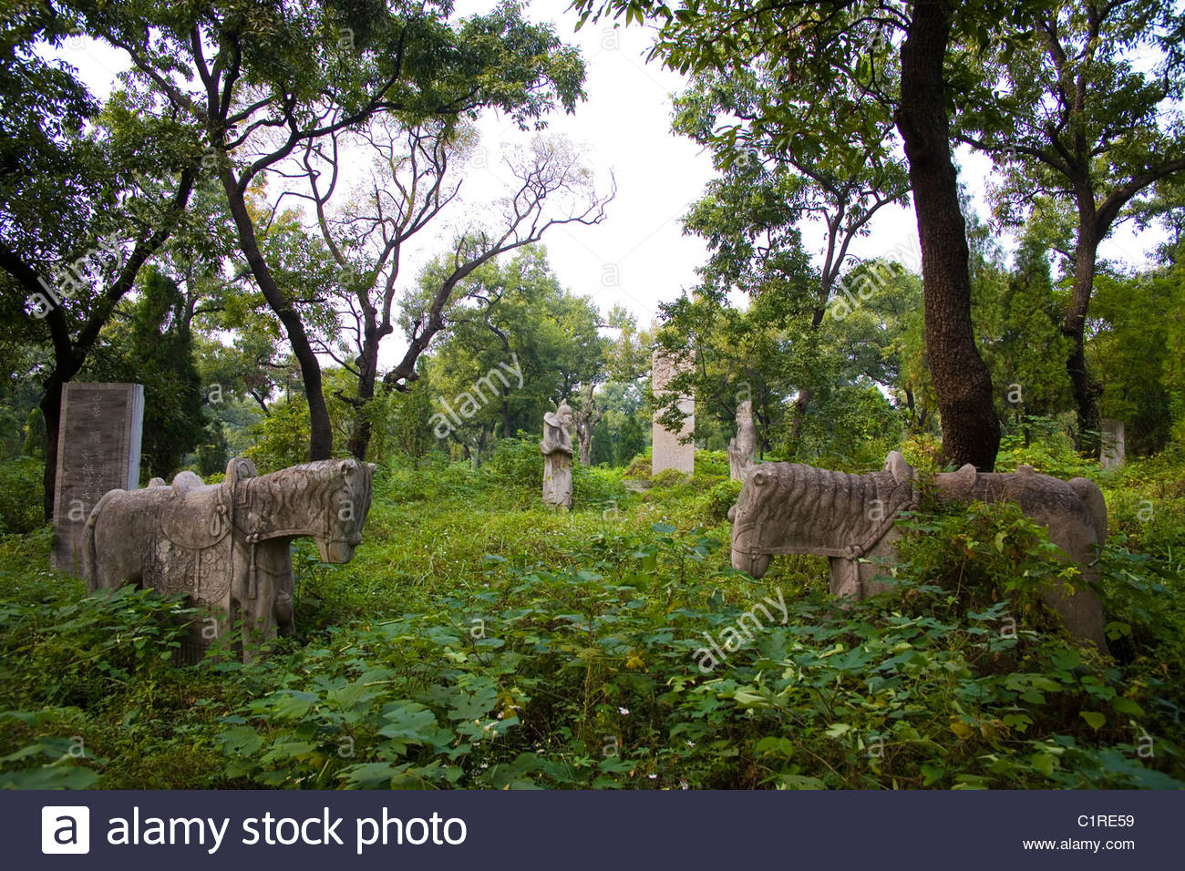 Qufu, Confucius Forest Cemetery, Shandong Province, China