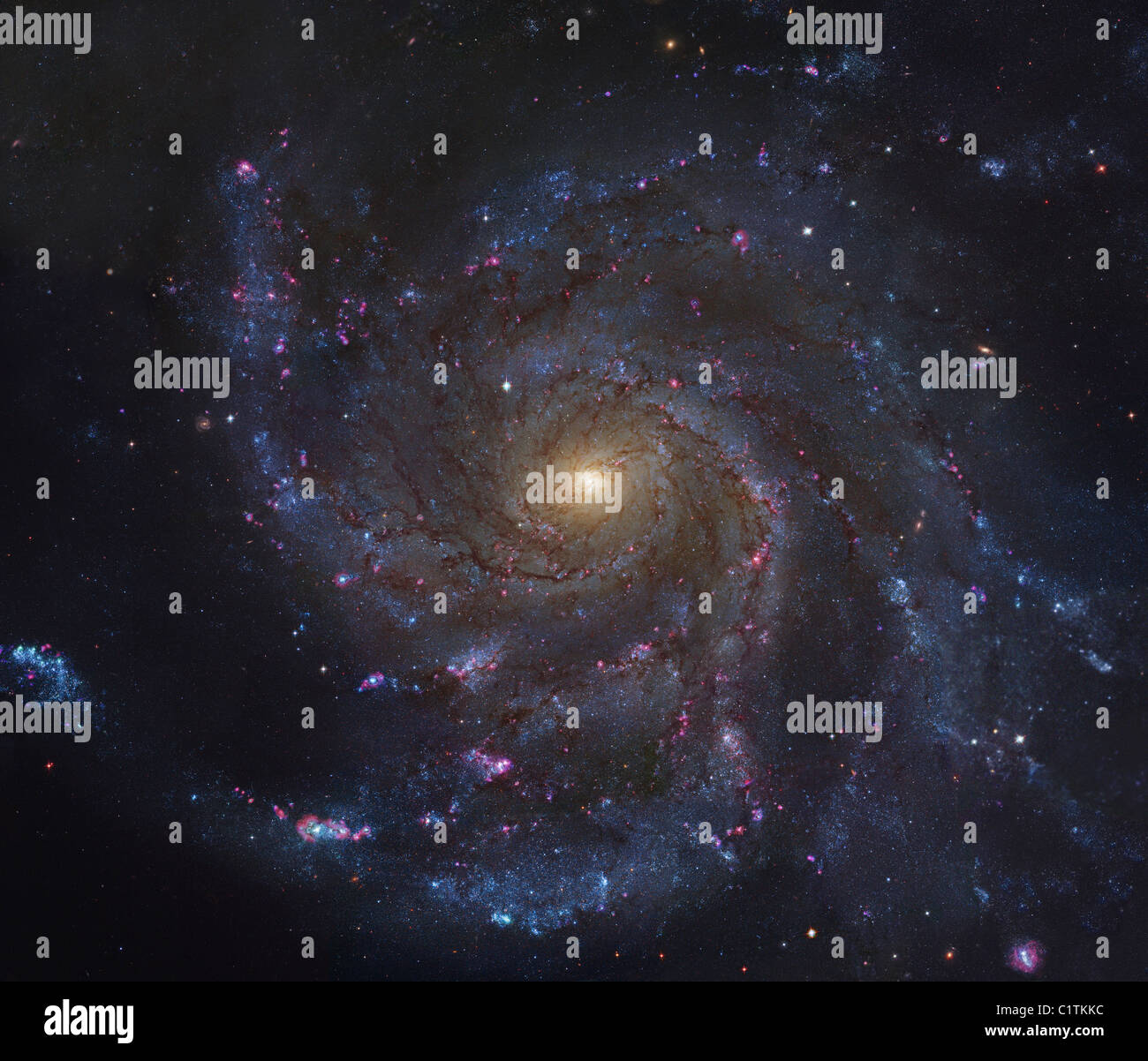 The Pinwheel Galaxy - Stock Image