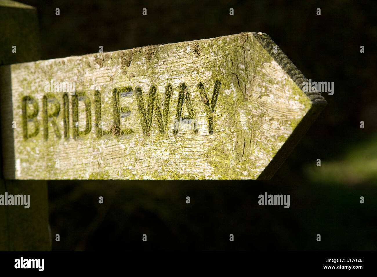 Wooden bridleway sign pointing direction arrow - Stock Image