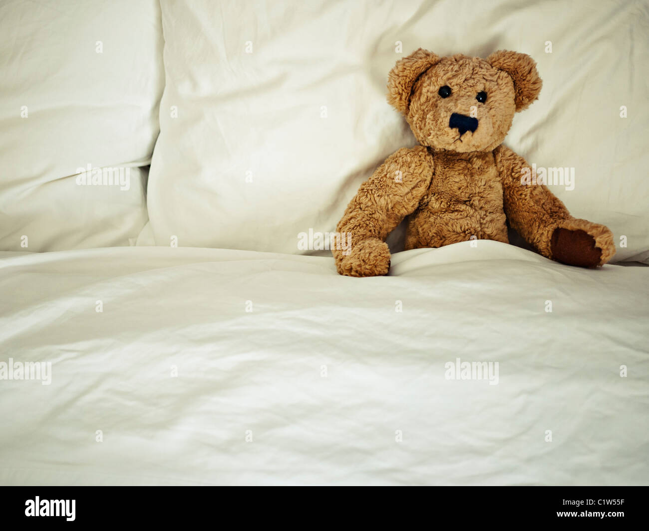 Teddy bear in bed - Stock Image