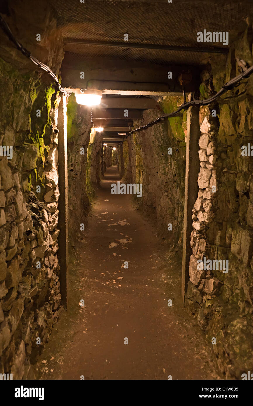 Tunnel beneath Vimy Ridge used by Canadian troops in the First World War France - Stock Image