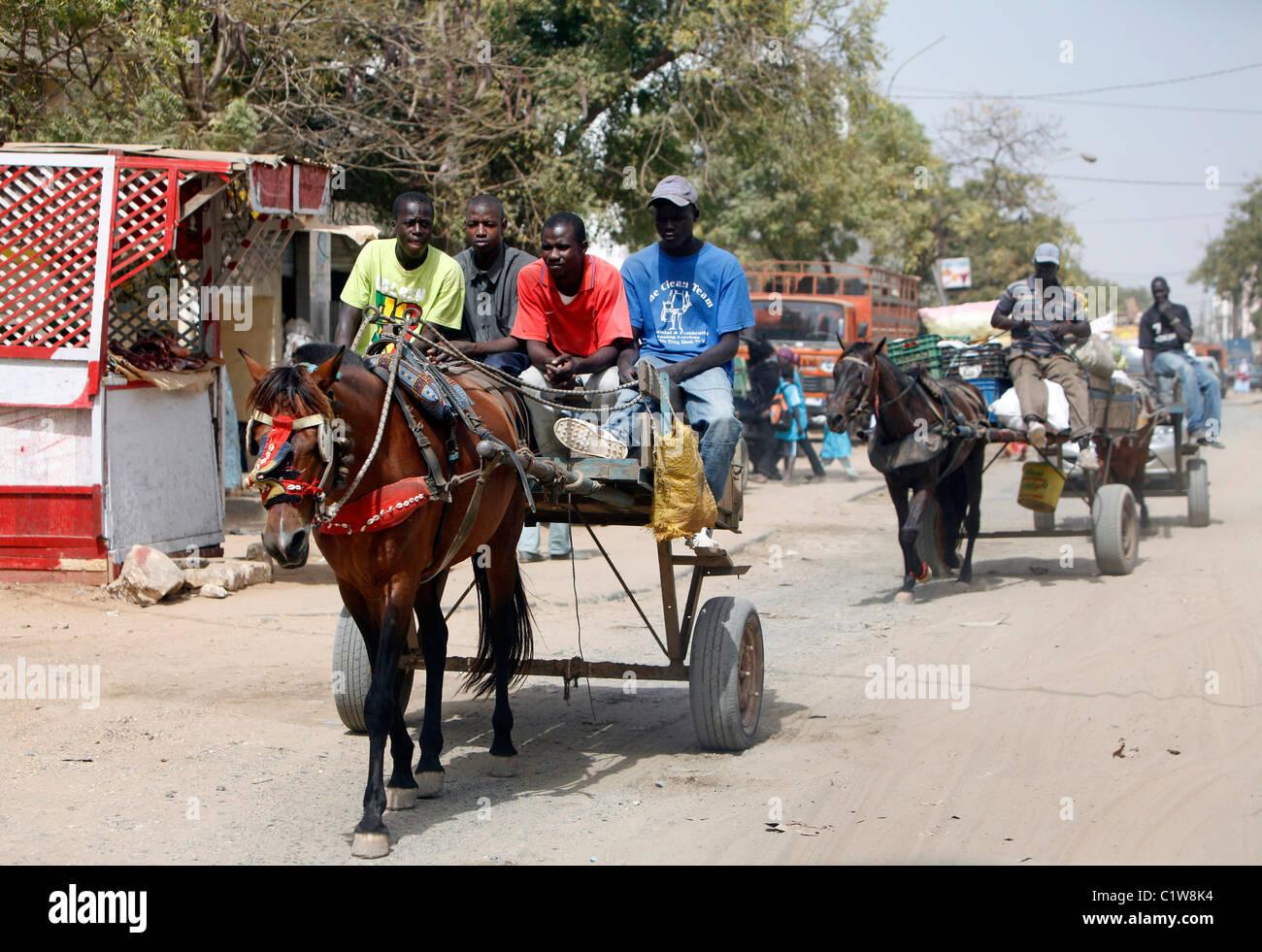 Horse cart, Dakar, Senegal - Stock Image