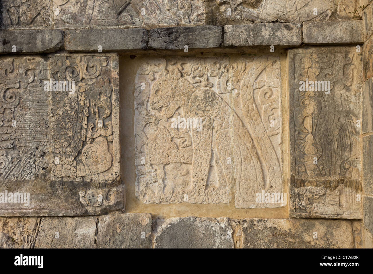 Relief carving depicting a jaguar eating a human heart on The Platform of Eagles and Jaguars in Chichen Itza, Yucatan, - Stock Image