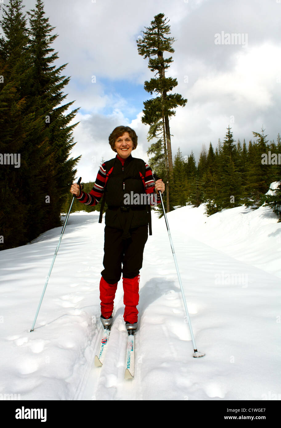40,624.03353 Woman dressed in black and red cross-country skiing up a sunny snow covered conifer forest backcountry Stock Photo