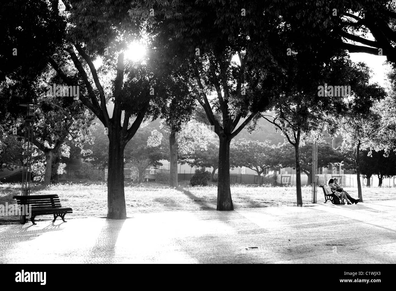 Two Lovers Sit Isolated On Park Bench In Large Urban Park At Sunset