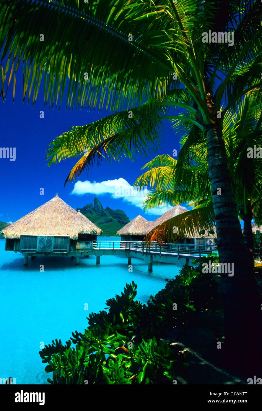 Tourist Resort On Water St Regis Bora Bora Resort Bora