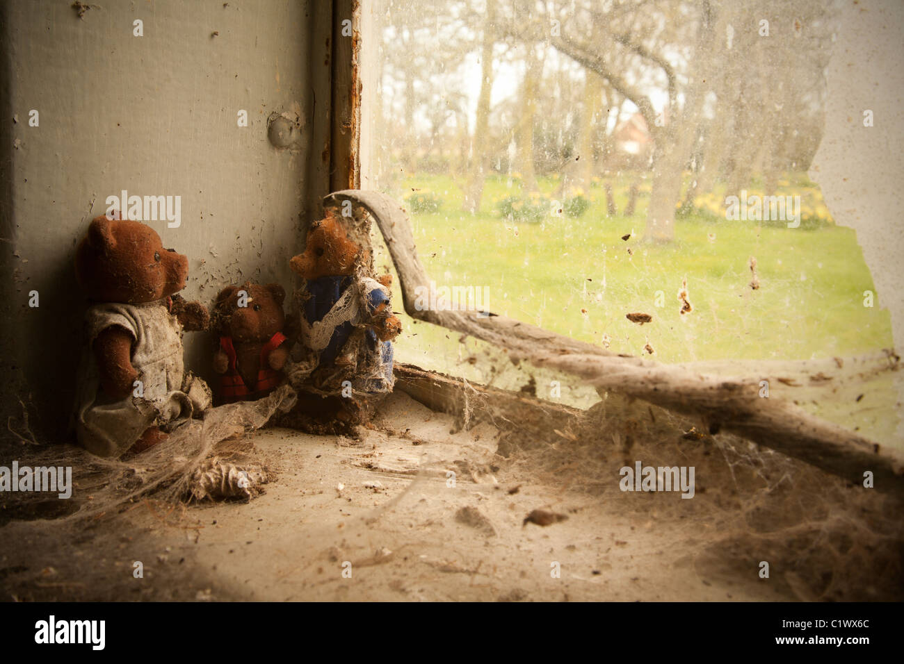 Old toy bears neglected on windowsill - Stock Image