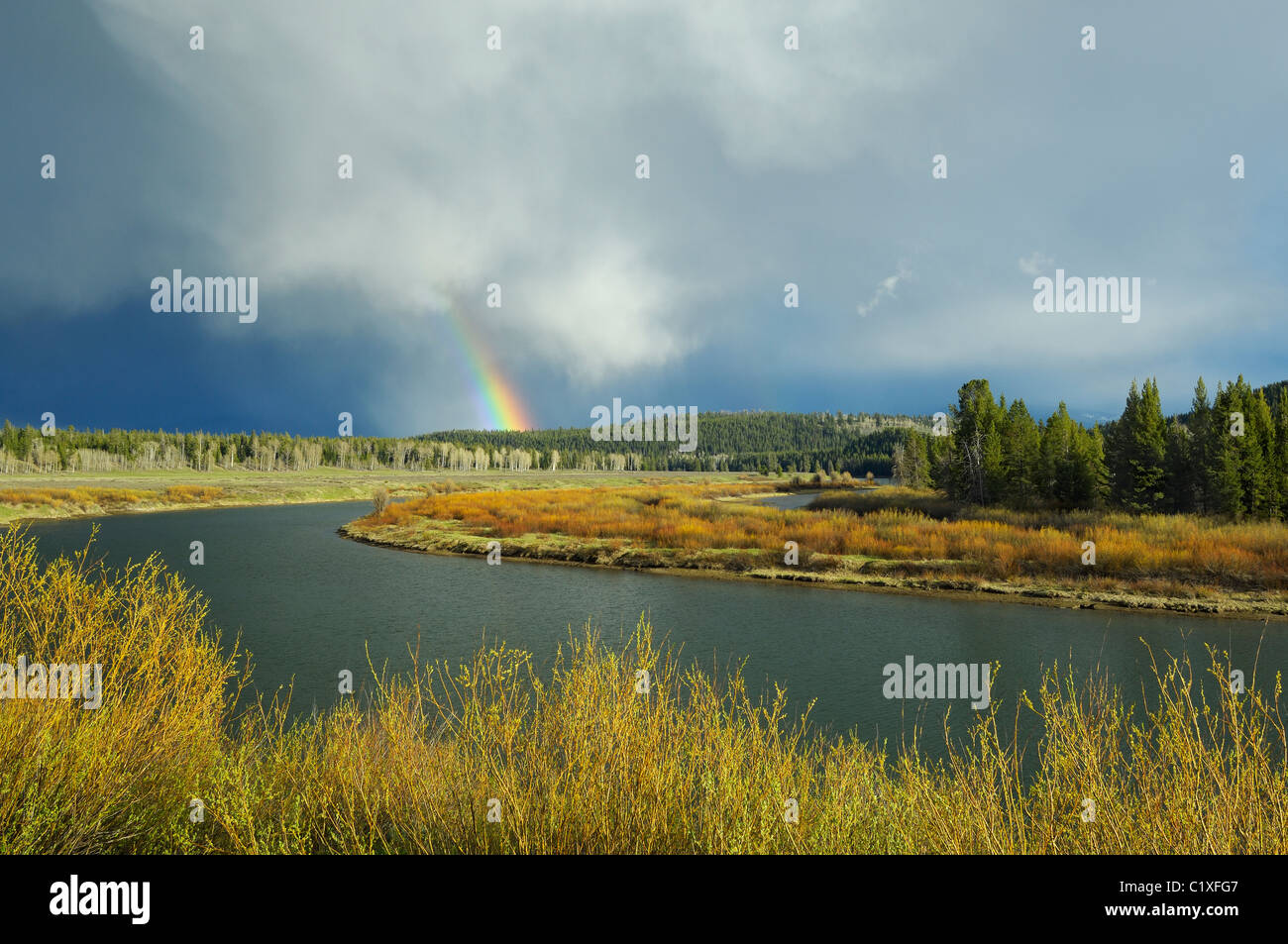 Rainbow at Oxbow Bend - Stock Image