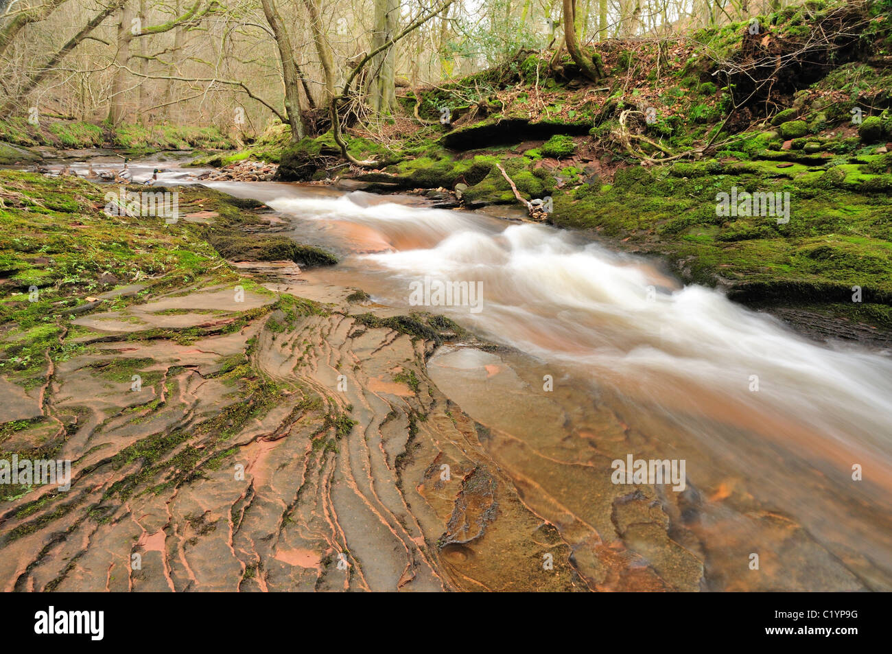 Old red sandstone and river in Gelt Woods near Brampton in Cumbria, England - Stock Image