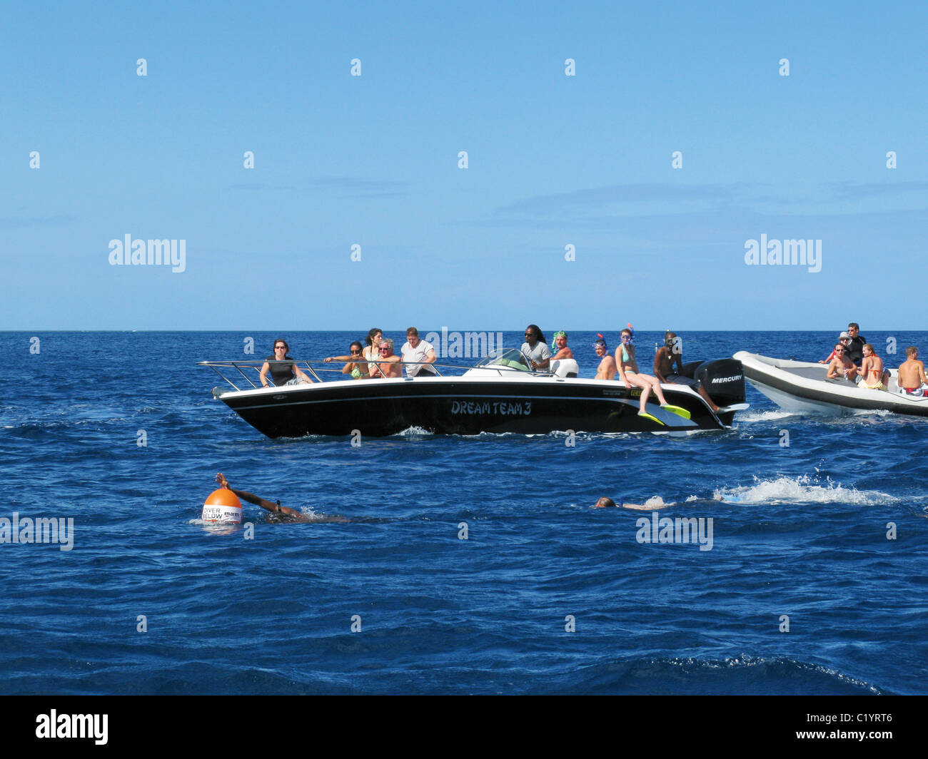 Tourists snorkeling and swimming with dolphins in the Baie de la Grande Rivière Noire, La Preneuse, Black River, - Stock Image