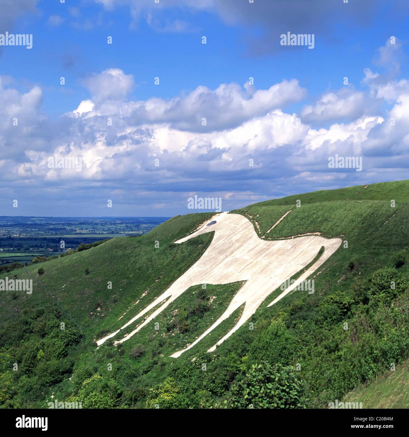 Westbury or Bratton White Horse hill figure hillside above Salisbury Plain originally cut into white chalk now concrete Stock Photo