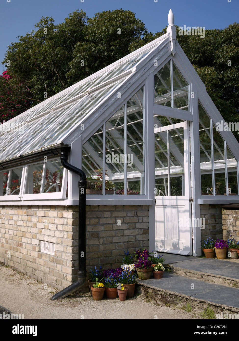Exterior of a greenhouse Lost Garden of Heligan  St Austell Cornwall UK - Stock Image