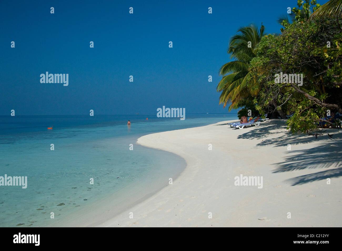 Desert island beach in the Maldives - Stock Image