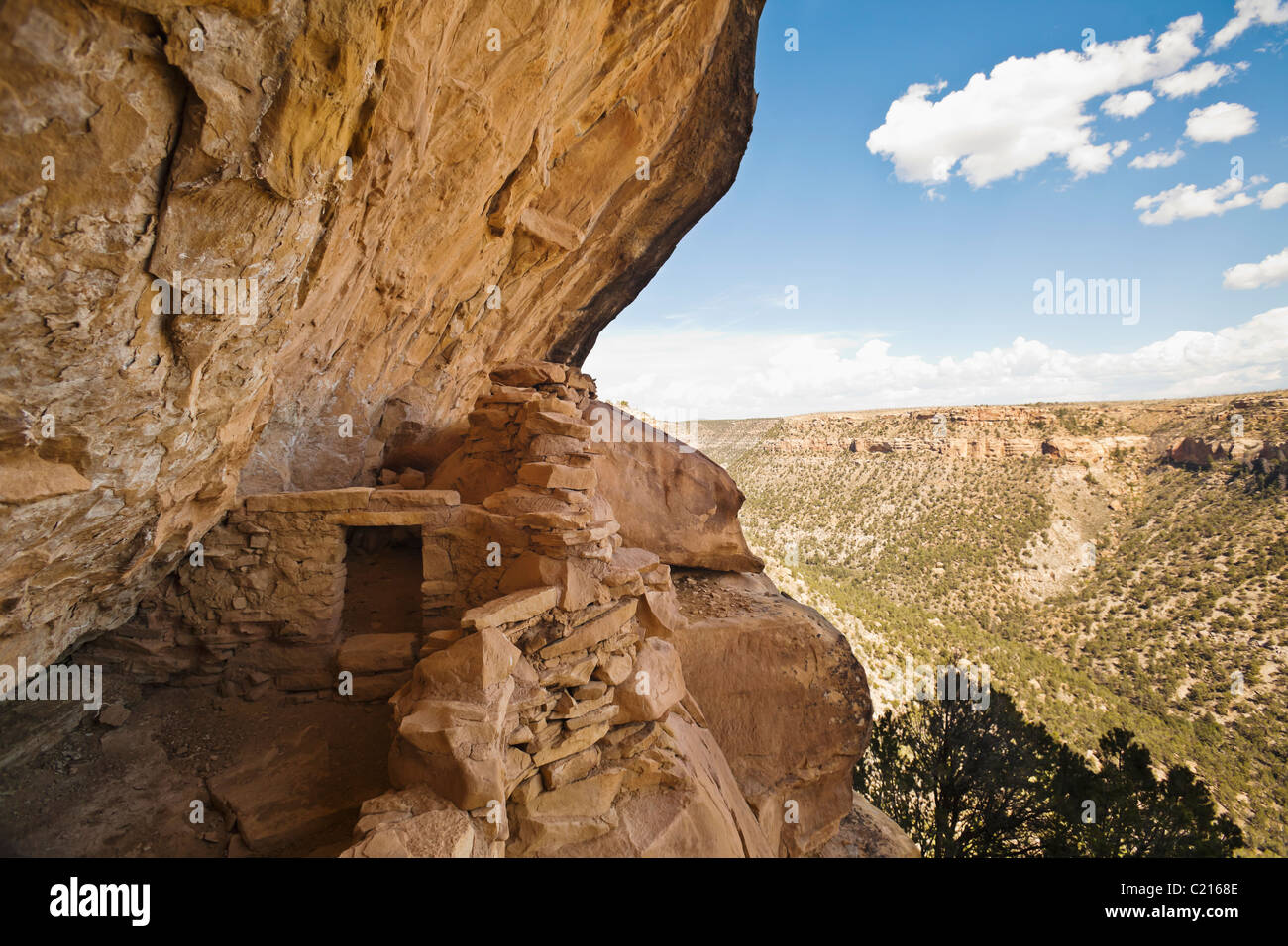 A view looking up the canyon while standing in Balcony House cliff dwelling in Mesa Verde National Park, Colorado, USA. Stock Photo