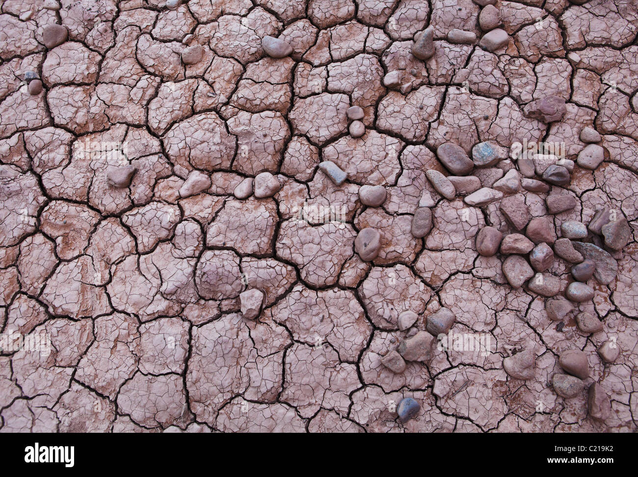 Cracked mud and pebbles in Arches National Park, Utah, USA. - Stock Image