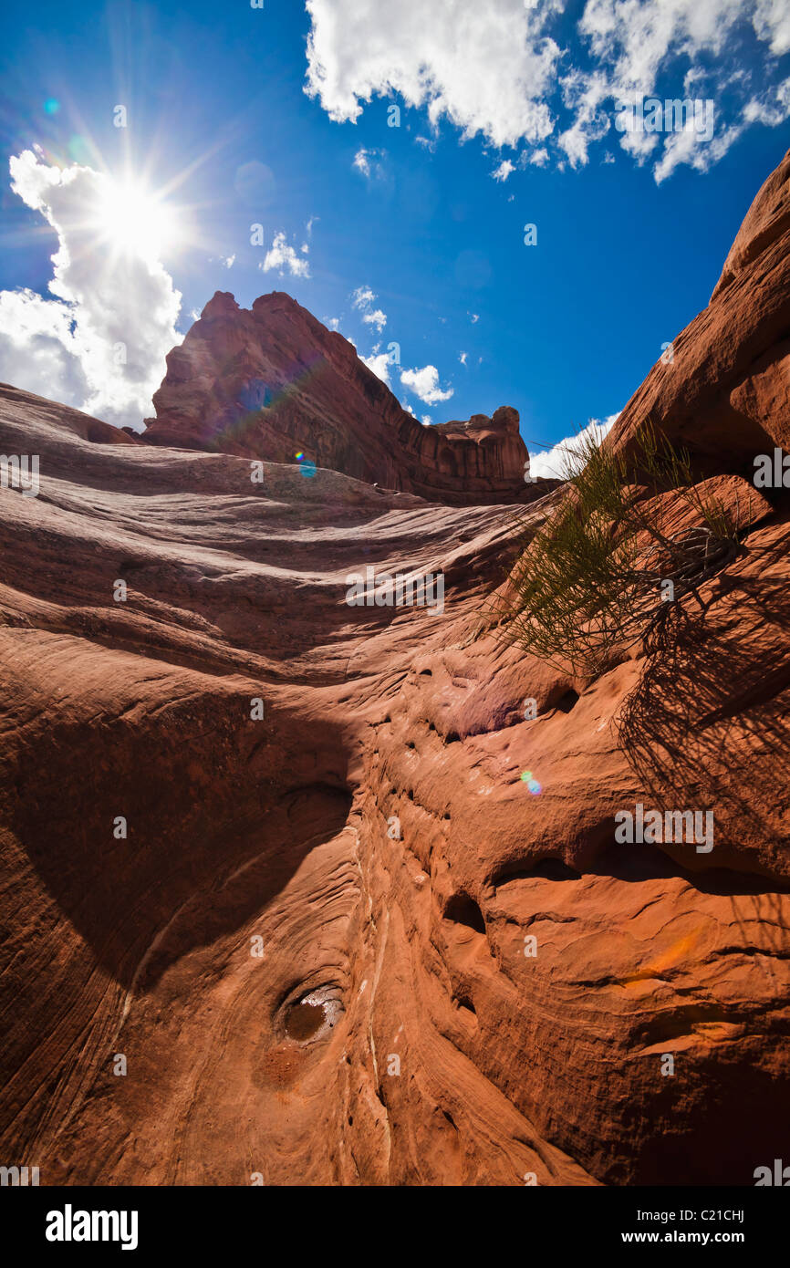 A gully on top of some sandstone rock formations in Canyonlands National Park, Utah, USA. - Stock Image