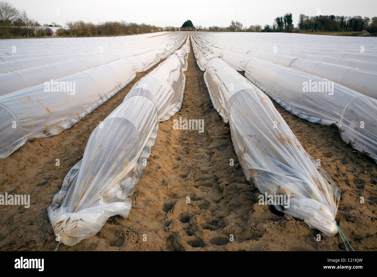 Polythene Tunnels Stock Photos Amp Polythene Tunnels Stock