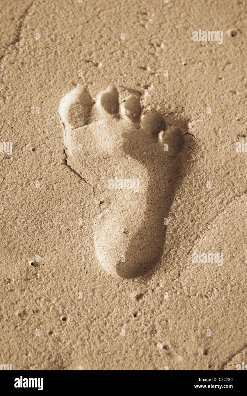 A child footprint on a sandy beach - Stock Image