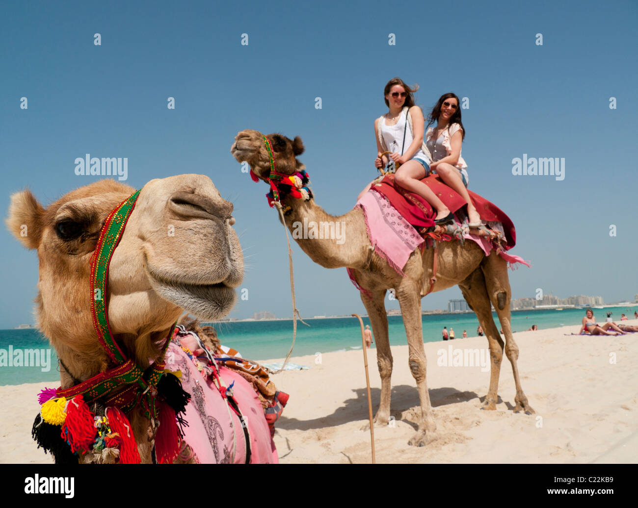 Two tourists having a camel ride on the beach in dubai in the uae two tourists having a camel ride on the beach in dubai in the uae thecheapjerseys Image collections
