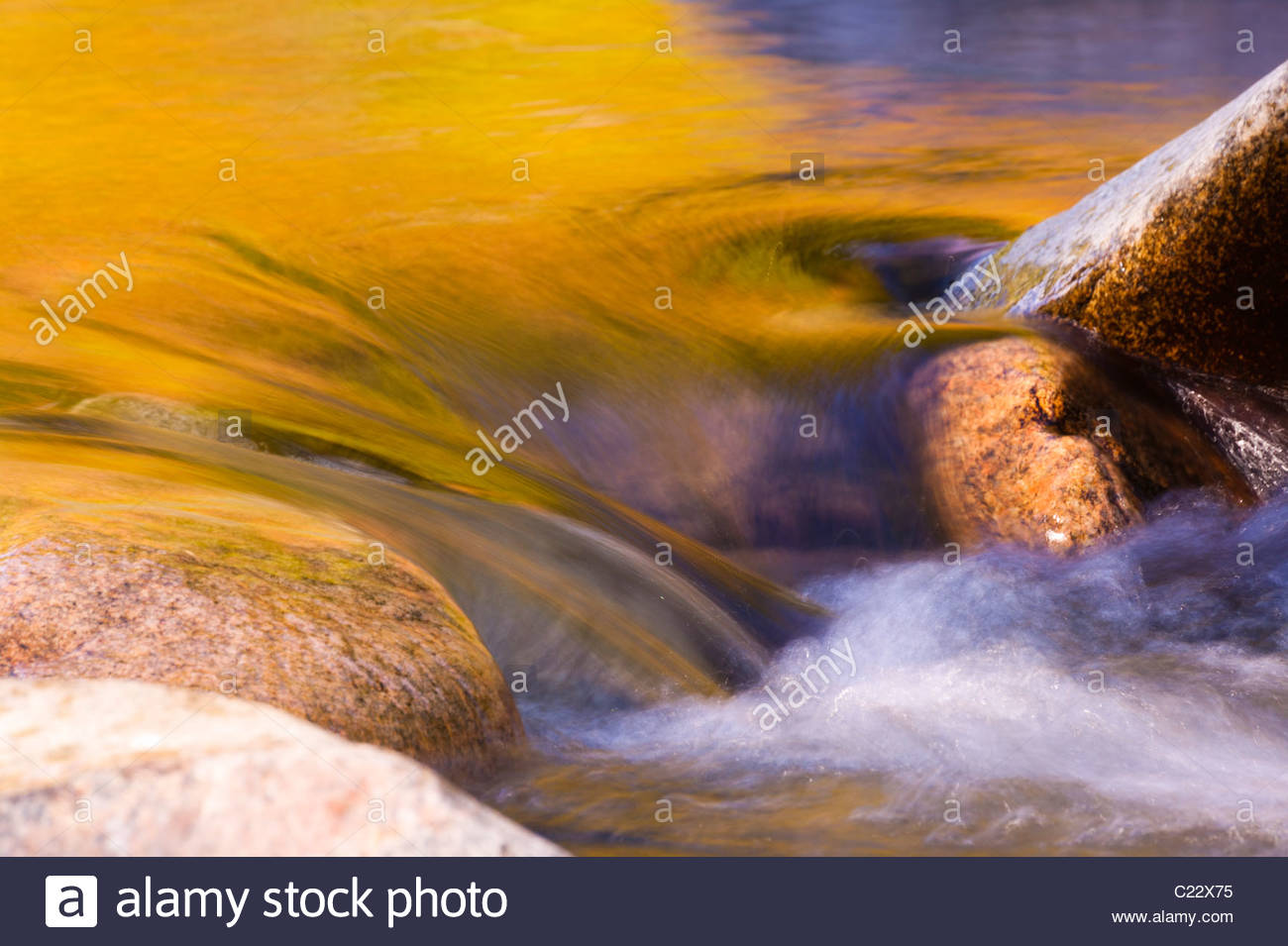Vibrant fall colors reflect on the Swift River, which flows through the White Mountains in New Hampshire. - Stock Image