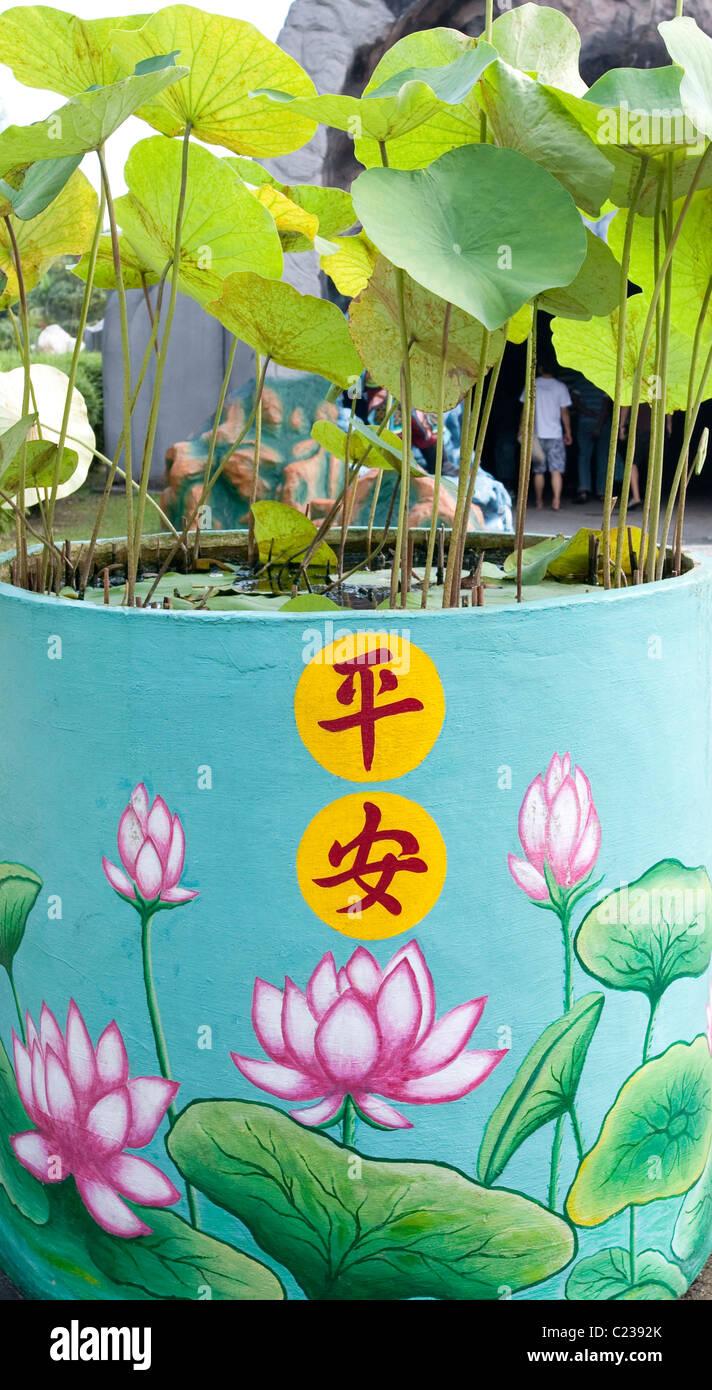 Lotus Flower Design Stock Photos & Lotus Flower Design Stock Images ...