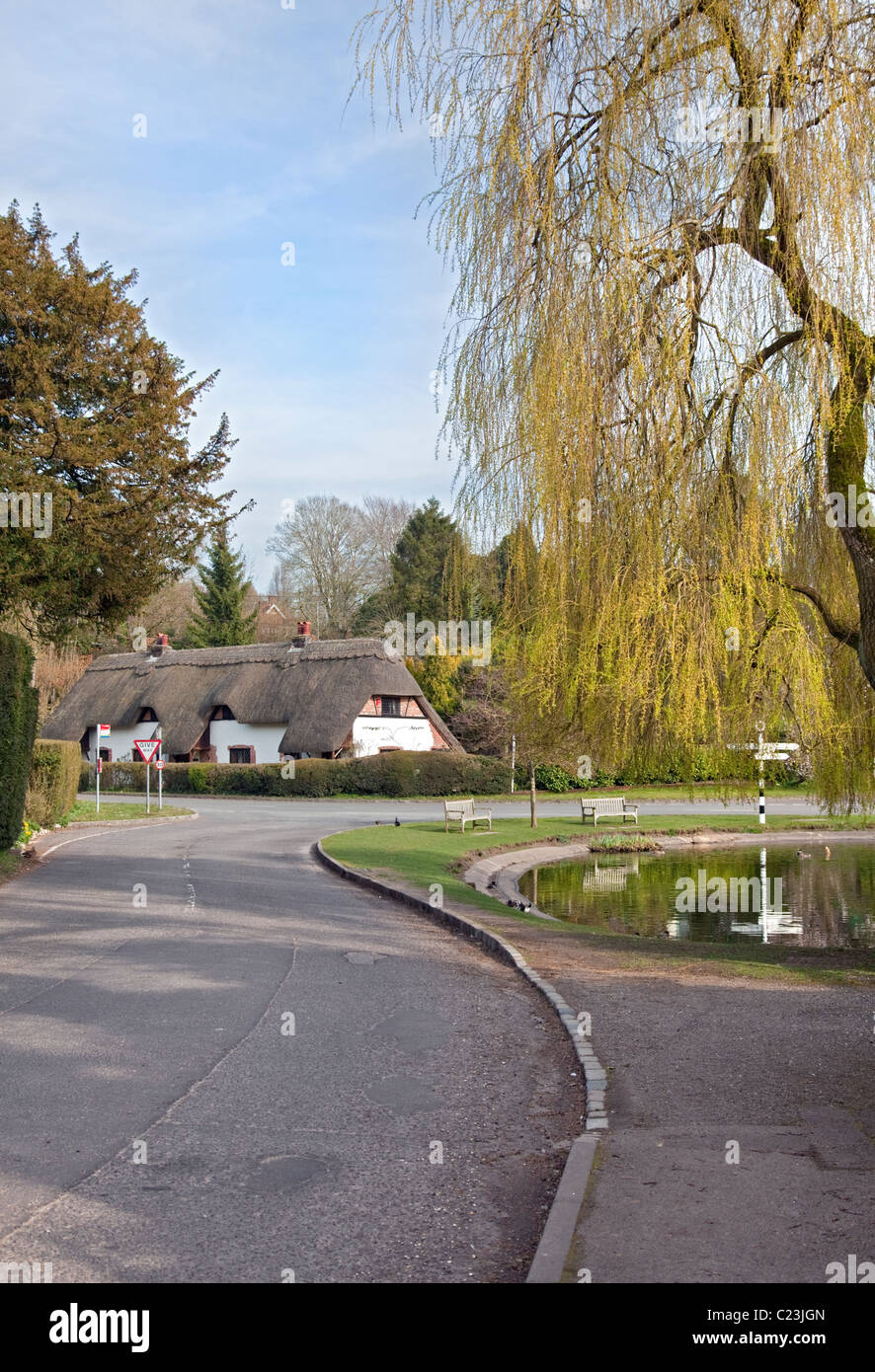 Cottage and Village Duck Pond, Crawley, Hampshire - Stock Image