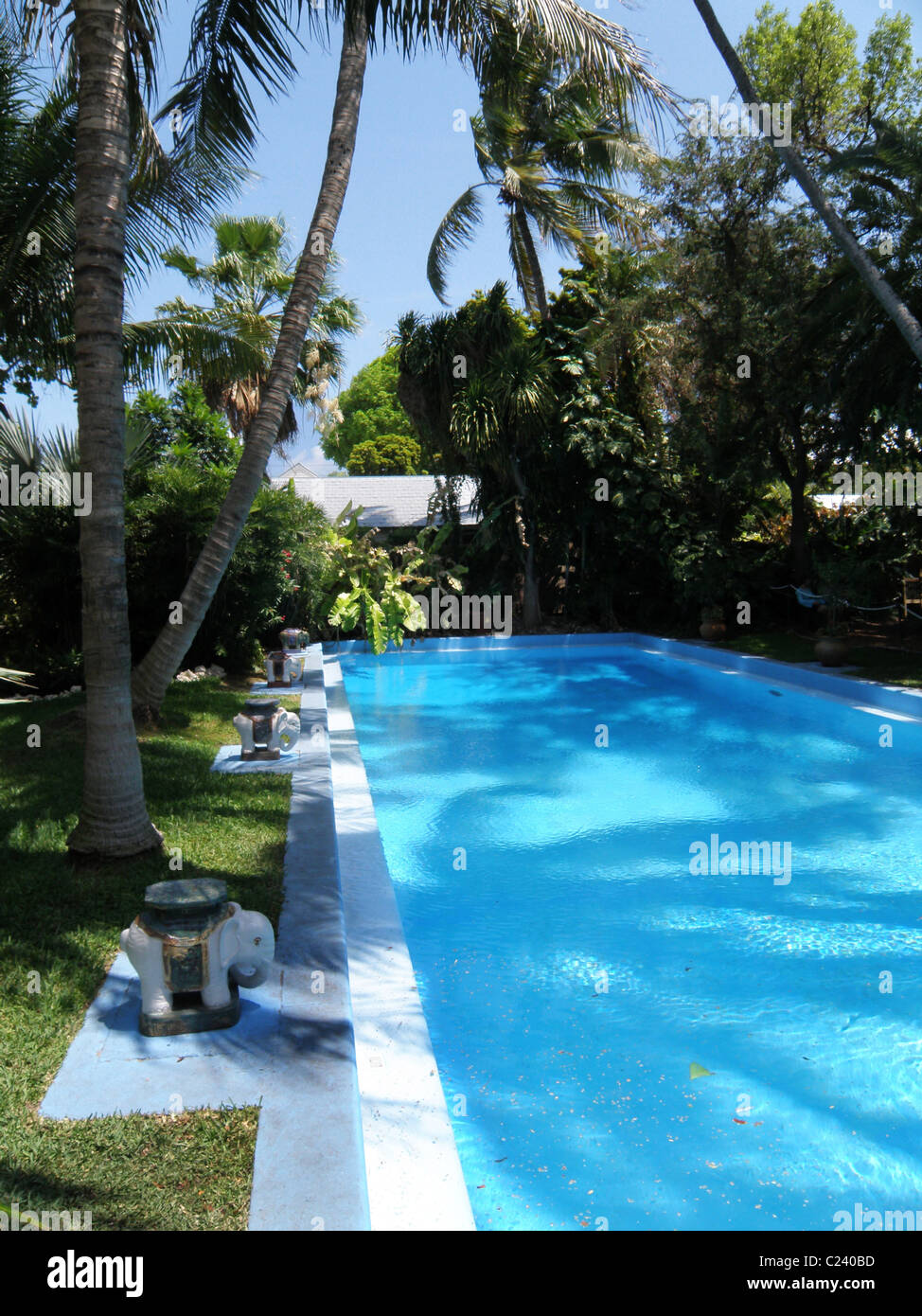 The backyard pool of the Hemingway house in Key West, Florida. Stock Photo