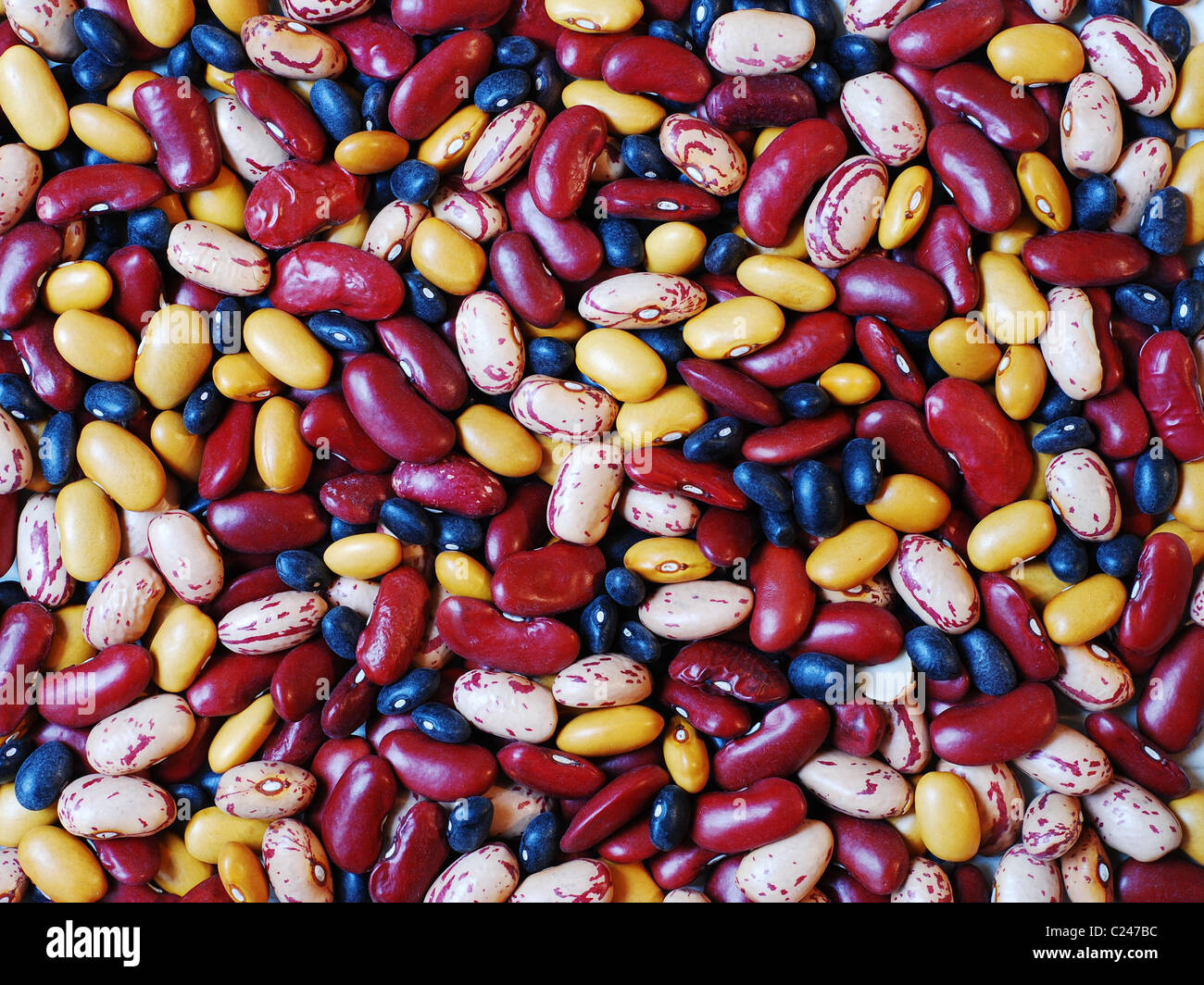 Mixture of different type of colorful beans - Stock Image