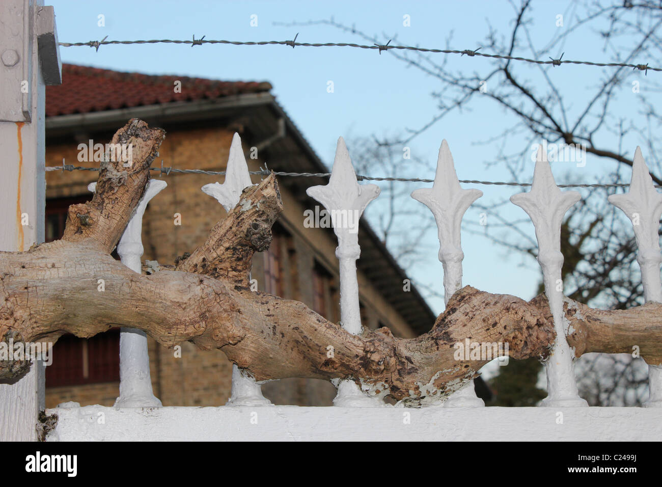 Barbed wire with  wood and a building on the back round Stock Photo