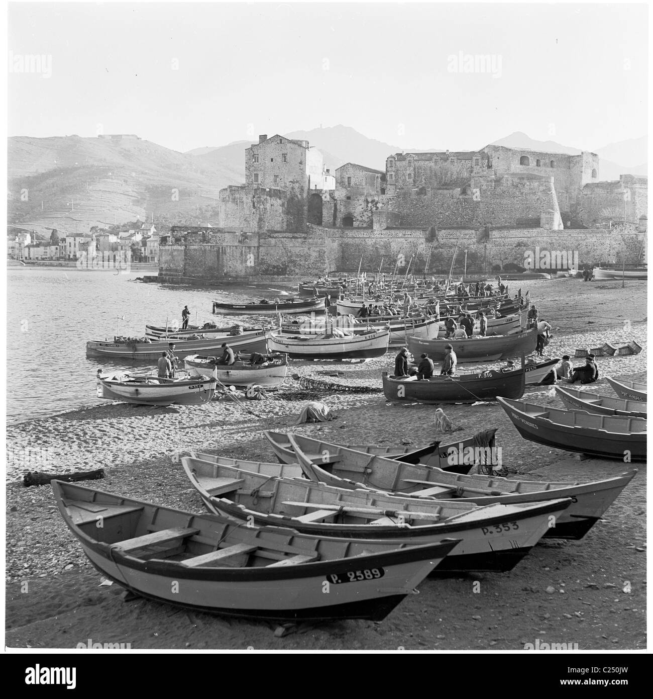 1950s, France. Fishing boats moored on beach at Collioures, France with old fortress in distance in this historical - Stock Image