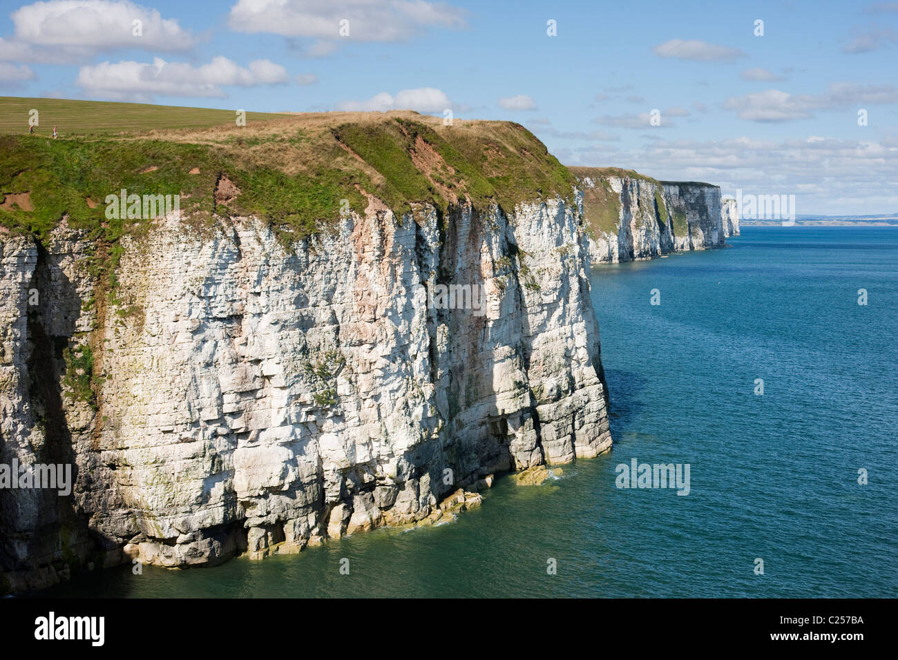 Chalk cliffs looking towards Bempton from Thornwick Bay, Flamborough, East Yorkshire Stock Photo
