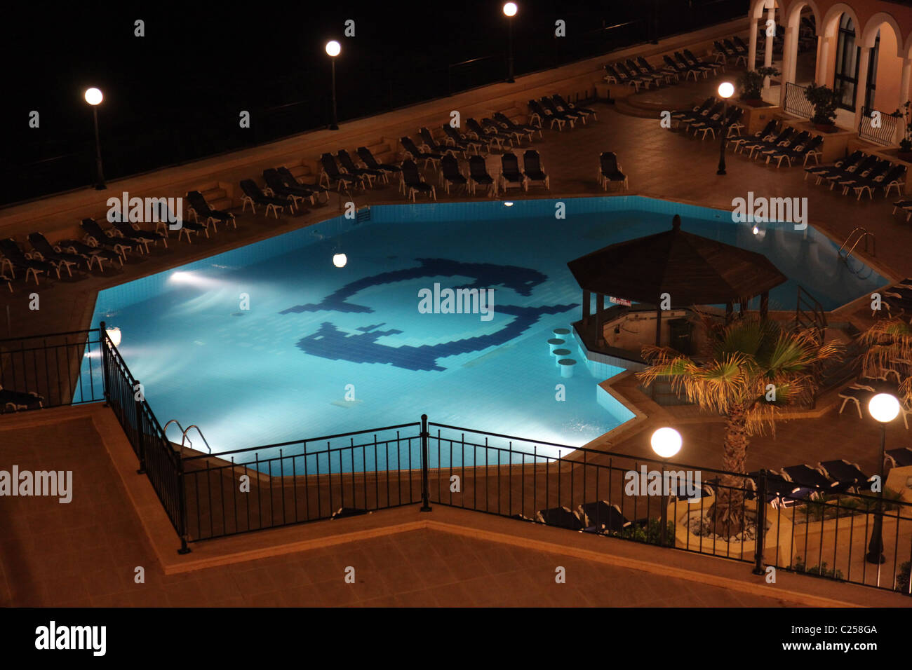 At dolphins night stock photos at dolphins night stock images alamy for Late night swimming pools london
