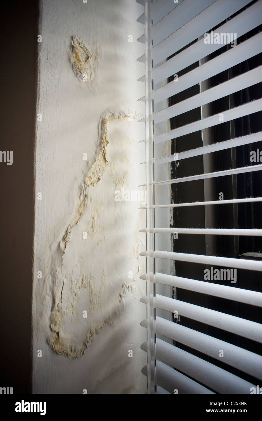 A wall damaged by a water leak in an apartment building in New York is seen on Wednesday, March 30, 2011. - Stock Image