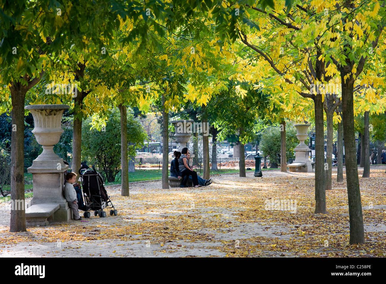 Avenue of trees in the garden of the Parc du Champ de Mars, Paris - Stock Image