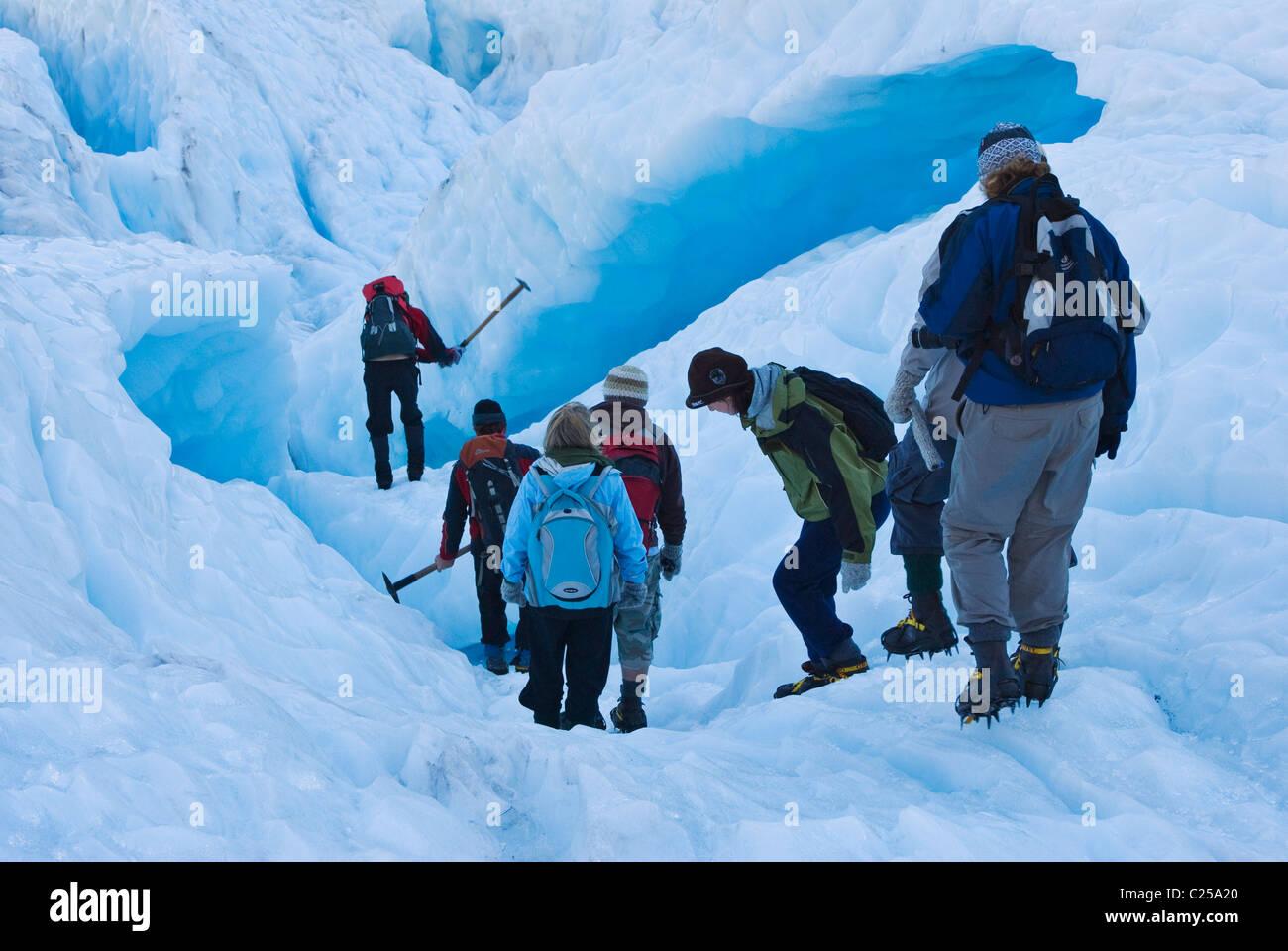 Heli-hikers on Fox Glacier, Westland, New Zealand - Stock Image