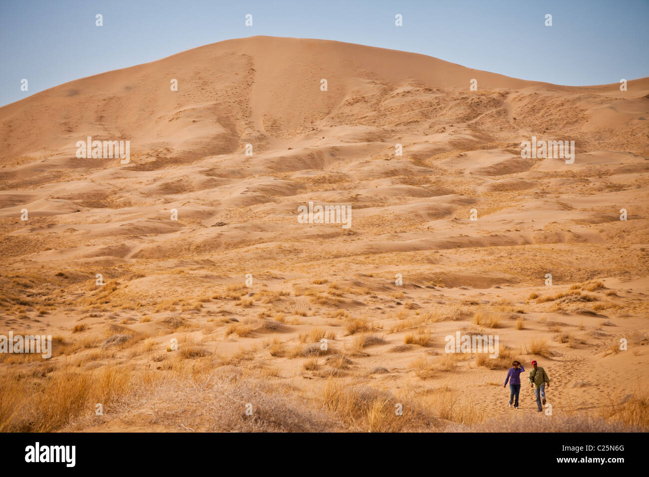 Kelso Dunes in the Mojave Desert in the Mojave National Preserve, Kelso, CA - Stock Image