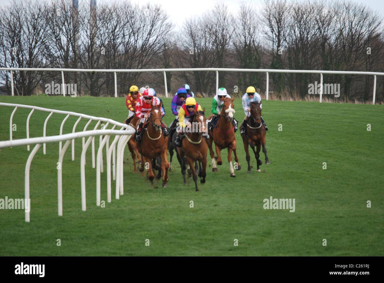 Musselburgh races - Stock Image