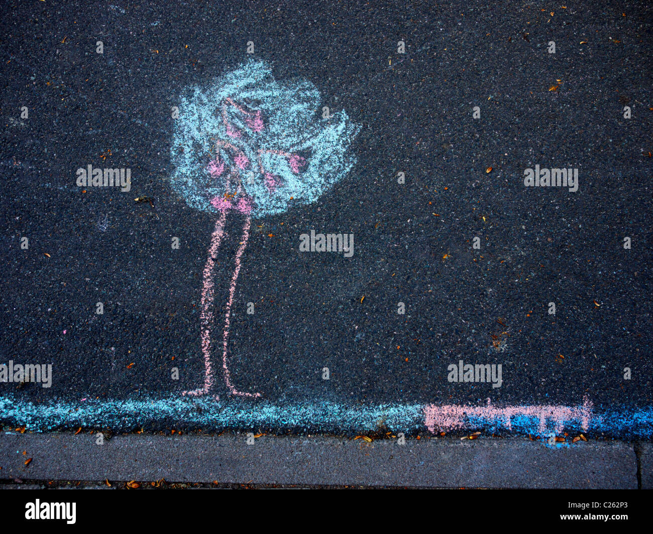 Chalk drawing depicting a tree on the street - Stock Image
