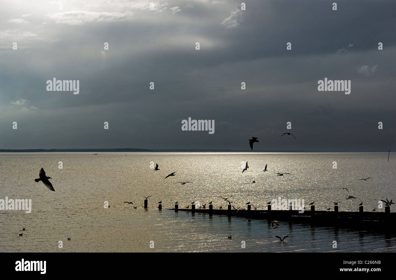 Rainclouds gathering over the Thames Estuary.  Photograph by Gordon Scammell - Stock Image